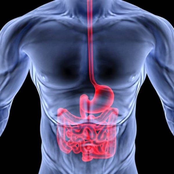 Prywatny Gabinet Lekarsko-Gastroenterologiczny lek. med. Stanisław Tomas Specjalista Chorób Wewnętrznych, Gastroenterolog
